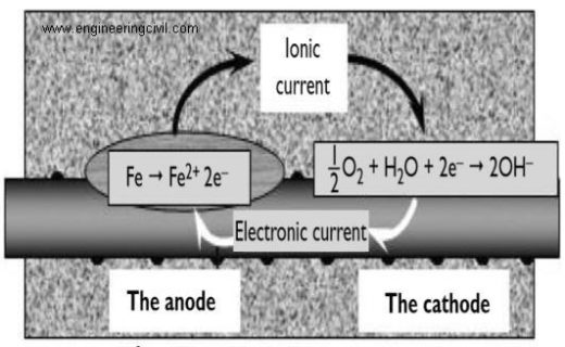 Fig 1. anode and cathode reaction of corroding bar